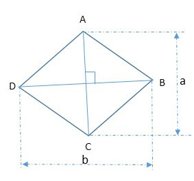 What is the area of the  rhombus? How to find the area of a rhombus?